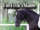 Pin Rock's Stable